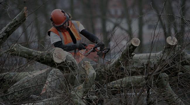 Granbury Tree Service