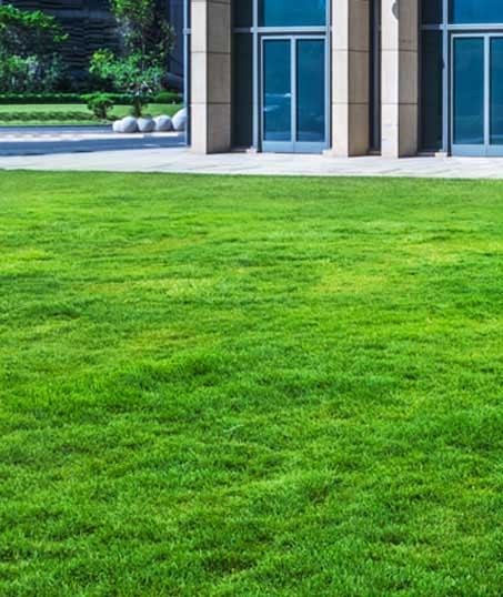 1st Choice Lawn Care & Landscaping Aeration