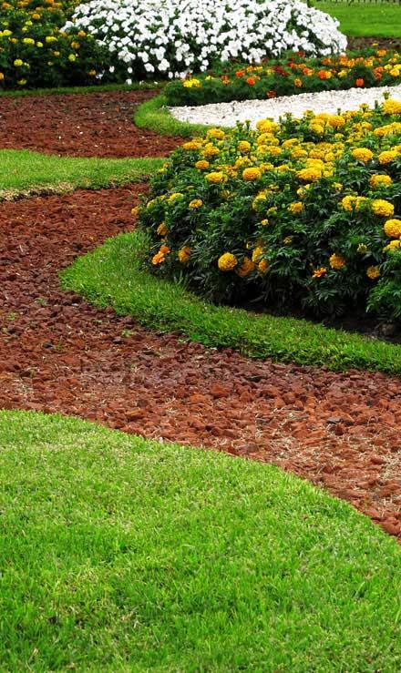 1st Choice Lawn Care & Landscaping Landscape Architecture