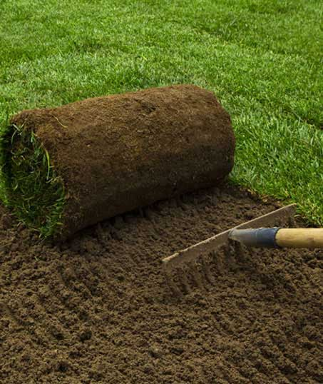 1st Choice Lawn Care & Landscaping Sod Installation