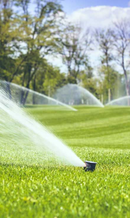 1st Choice Lawn Care & Landscaping Sprinkler Installation